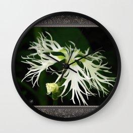 Dianthus named Superbus White Wall Clock
