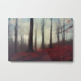 Fall Fantasy - Misty Forest Metal Print