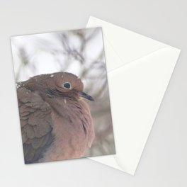 Watercolor Bird, Mourning Dove 01, Middletown, Maryland, Fluffy the Snow Bunny Stationery Cards