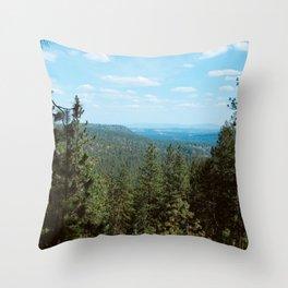 Above The Northwest Wild Throw Pillow