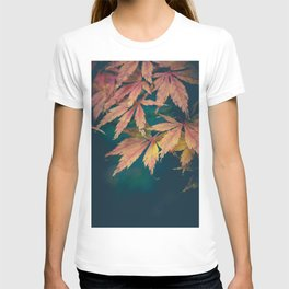 Fall Acer Leaves T-shirt