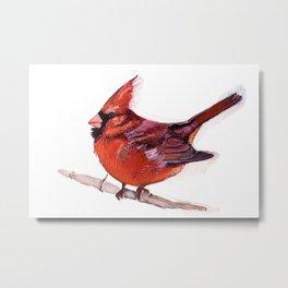 Red Cardinal-Bird Painting Metal Print
