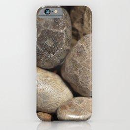 Petoskey Stones iPhone Case