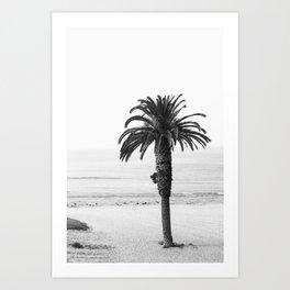 Malibu Palm Tree Art Print