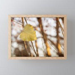 Fallen Autumn Leaves 16 Framed Mini Art Print