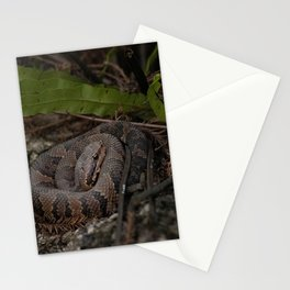 Juvenile Cottonmouth Stationery Cards