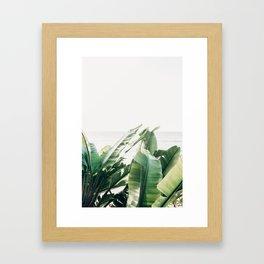 Pretty Palms Framed Art Print