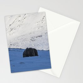 Musk Ox Stationery Cards