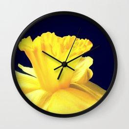 Daffodil Ruffles - iPhoneography Wall Clock