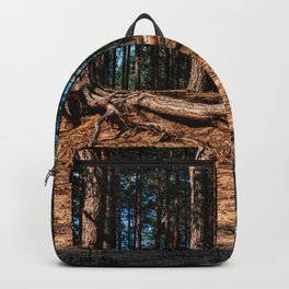 Trees, forest, sand, European countryside, pine trees (2018-8SPBS15) Backpack