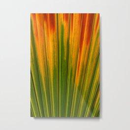 Orange And Green Palm Tree Leaf Metal Print