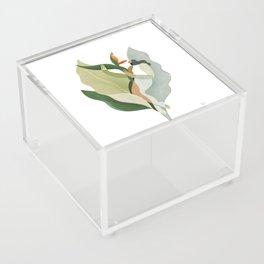 Bird of paradise Acrylic Box