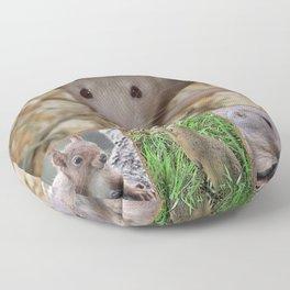 Cute rodents Floor Pillow