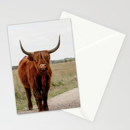Highland Cow in nature   Scottish Highlanders, cattle in the Netherlands   Wild animals   Fine art travel and nature photography art print Stationery Cards