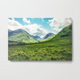 Lush Vegetation Mountain Valley  Metal Print