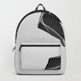 Figure 1 Backpack