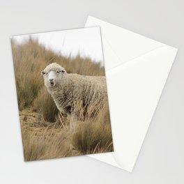 sheep in Peru Stationery Cards