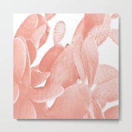 Pink Cactus Close-up Metal Print