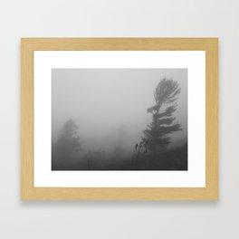 Wind's Haiku Framed Art Print