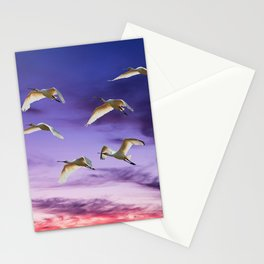 Spoonbills Stationery Cards