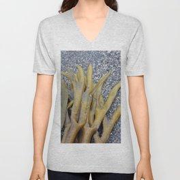 Kelp Bladders Unisex V-Neck