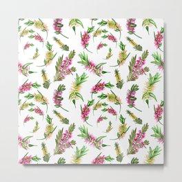 Australian Native Flower Bottlebrush Print Metal Print