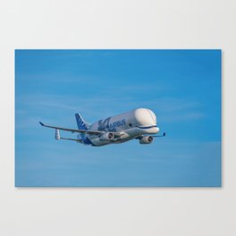 Airbus Beluga XL supertransporter Canvas Print