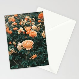 Forest of Roses Stationery Cards
