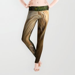 Highland Lad Leggings