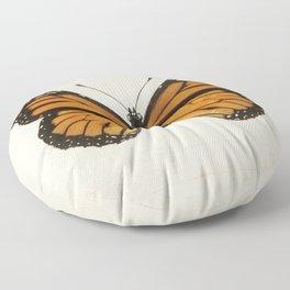 Monarch Butterfly | Monarch Butterflies | Moths and Butterflies of the United States | Vintage Butterflies |  Floor Pillow