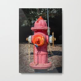 Molting Mueller Super Centurions Fire Hydrant Colorful Fireplug Metal Print