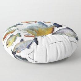 Piranha family Floor Pillow