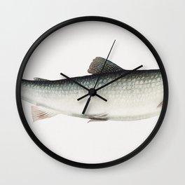 Lake Trout chromolithograph (1878) by Samuel Kilbourne Wall Clock
