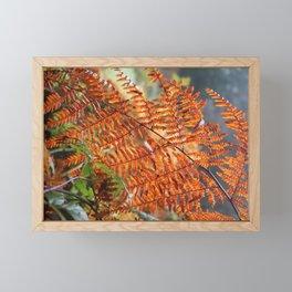 Orange Humboldt Fern Framed Mini Art Print