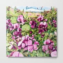 Pink Sweatpea Flowers Summertime Metal Print
