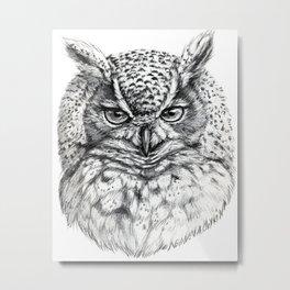 Owl SK136 Metal Print