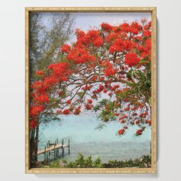 Wasting Away in Margaritaville - Key West, Straits of Florida landscape painting with Royal Poinciana blossoms Serving Tray