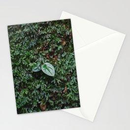 Moss II Stationery Cards