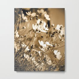Dreamy, sepia colors wild meadow flowers photography Metal Print