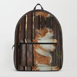 Sleepy Cat Backpack