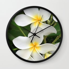 Angel Bright Tropical Plumeria Flowers Wall Clock