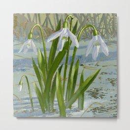 snowdrop flower Metal Print