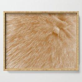 Orange Fur Serving Tray