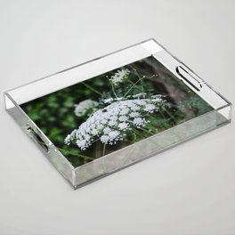 Queen Anne's Lace Acrylic Tray