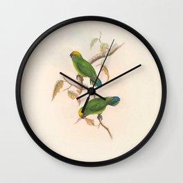 027 Ke Island Pygmy Parrot Yellow capped Pygmy Parrot nasiterna keiensis4 Wall Clock