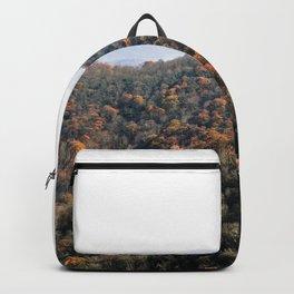 Buck Springs Gap No 1 Backpack