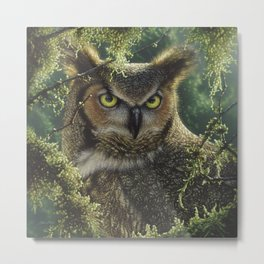 Great Horned Owl - Watching and Waiting Metal Print