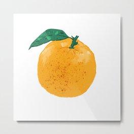 Fruit series Orange fruit Metal Print