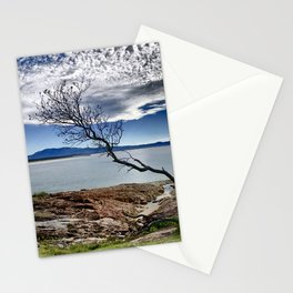 Australian Tree over the Bay at South West Rocks Stationery Cards