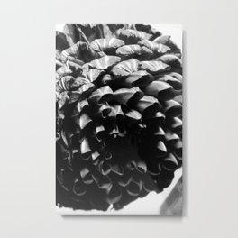 flower close up - black/white - sixteen Metal Print
